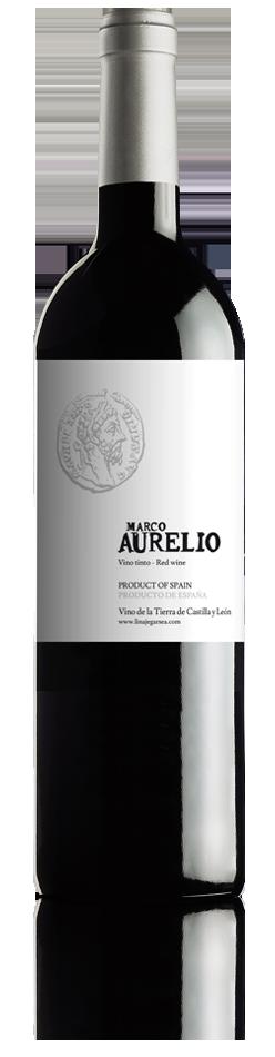Marco Aurelio VTCL